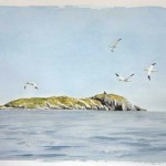 William Neill Wildlife and Landscape Artist - South Uist - Outer Hebrides - The Weaver's Castle